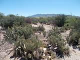 11150 Pantano Trail - Photo 29