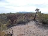 11150 Pantano Trail - Photo 7