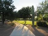 573 Camino Tunera - Photo 36
