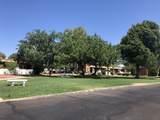 494 Paseo Cerro - Photo 30