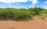 20 Ac Doe Ranch Road - Photo 1