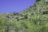 13768 Cactus Valley Court - Photo 10