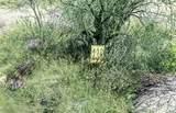 13768 Cactus Valley Court - Photo 11