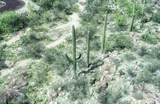 13768 Cactus Valley Court - Photo 12