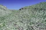 13768 Cactus Valley Court - Photo 15
