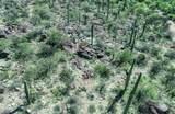 13768 Cactus Valley Court - Photo 16