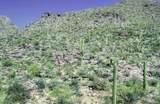 13768 Cactus Valley Court - Photo 17