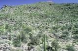 13768 Cactus Valley Court - Photo 18