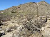 13768 Cactus Valley Court - Photo 22