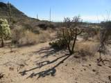 13768 Cactus Valley Court - Photo 24