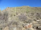 13768 Cactus Valley Court - Photo 25