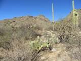 13768 Cactus Valley Court - Photo 26
