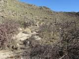 13768 Cactus Valley Court - Photo 28