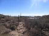 13768 Cactus Valley Court - Photo 29