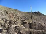 13768 Cactus Valley Court - Photo 31