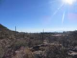 13768 Cactus Valley Court - Photo 33