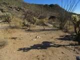 13768 Cactus Valley Court - Photo 34