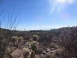 13768 Cactus Valley Court - Photo 35