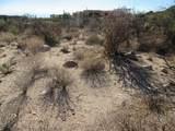 13768 Cactus Valley Court - Photo 36