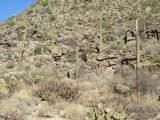 13768 Cactus Valley Court - Photo 38