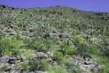 13768 Cactus Valley Court - Photo 4