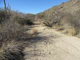 13768 Cactus Valley Court - Photo 40