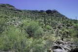13768 Cactus Valley Court - Photo 5