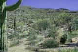 13768 Cactus Valley Court - Photo 6