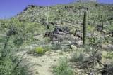 13768 Cactus Valley Court - Photo 7