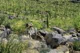 13768 Cactus Valley Court - Photo 8