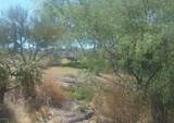 14341 Giant Saguaro Place - Photo 1