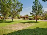 103 Paseo Tierra - Photo 17