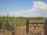 80 Acres Central Hwy & Bagby R - Photo 5