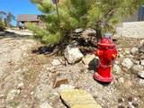 13048 Upper Loma Linda Lane - Photo 9