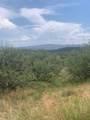 717 Camino Arruza - Photo 1
