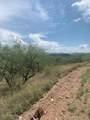 717 Camino Arruza - Photo 16