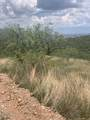 717 Camino Arruza - Photo 5