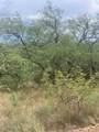 717 Camino Arruza - Photo 8