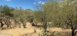 8850 Camino Coronado - Photo 10