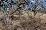 Gray Hawk Trail - Photo 14
