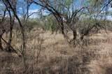 Gray Hawk Trail - Photo 2