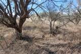 Gray Hawk Trail - Photo 3