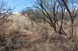 Gray Hawk Trail - Photo 6