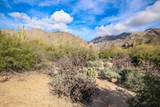 6655 Canyon Crest Drive - Photo 49