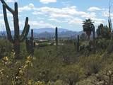 2939 Camino A Los Vientos - Photo 1