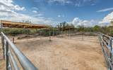 2901 Pedregal Drive - Photo 47