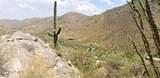 4425 Cush Canyon Loop - Photo 5