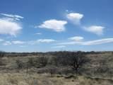 1654 Desert Oasis Court - Photo 2