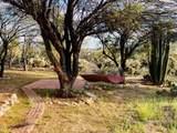 2620 Tomahawk Trail - Photo 9