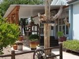 10190 Camino Pico Vista - Photo 8